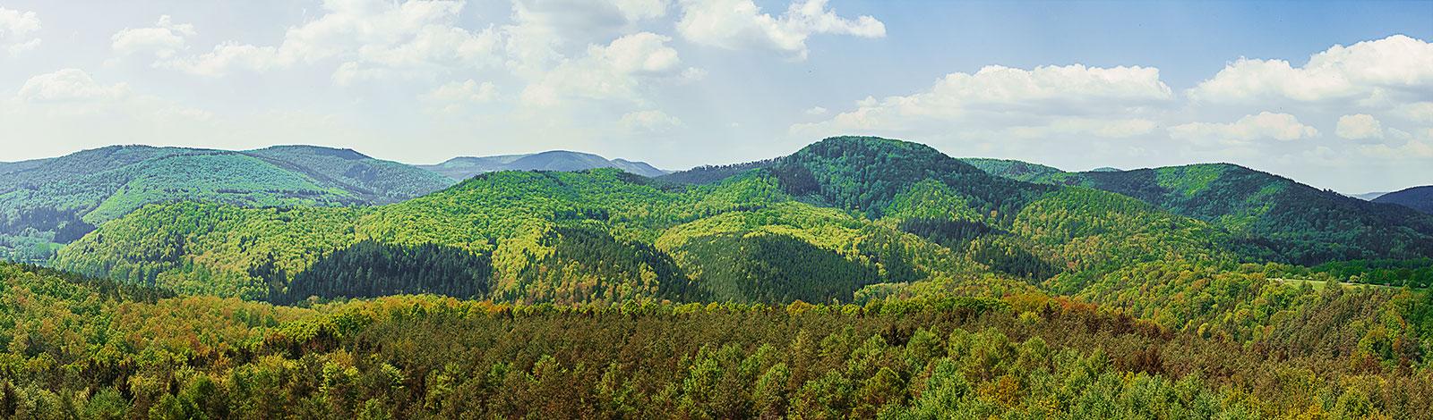 Elsass_Panorama1x